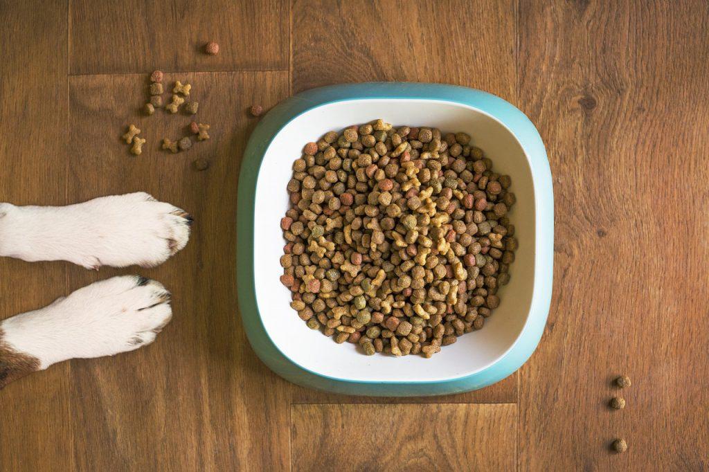 Non prescription diabetic dog food